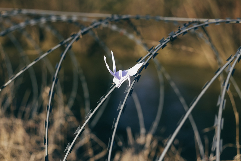 """Croatia complained to the EU that the Slovenian fence is an obstacle for migration of wildlife such as deer and that """"Slovenia is violating European legislation on the conservation of natural habitats and the environment"""". The razor-wire fence laid by Slovenia in December 2015 on the border with western Croatian regions of Istria and Gorski kotar endangeres the habitat of the wolf and the brown bear, both of which are protected by law in Croatia. Local hunters have found deer killed by the fence. The WWF and the inhabitants of the regions from both sides of the border have protested against the decision to put up the razor-wire fence."""