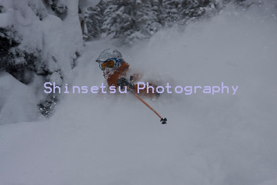 Powder snow, Revelstoke, British Columbia, Canada