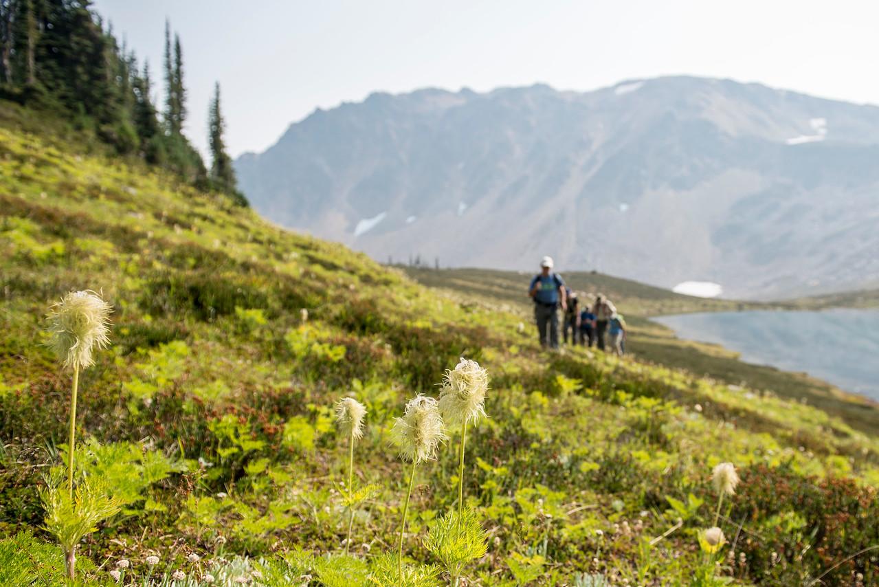 Hiking in Nagle Basin