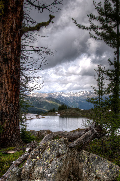 Larch and Dead Elk Lake