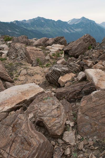 Interesting rocks in Forster Creek