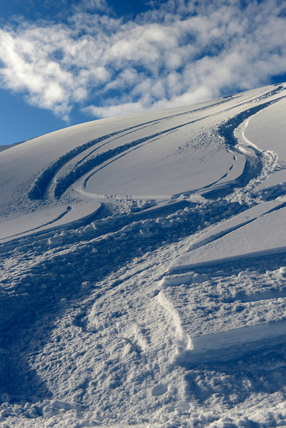 Tracks on Acupolco