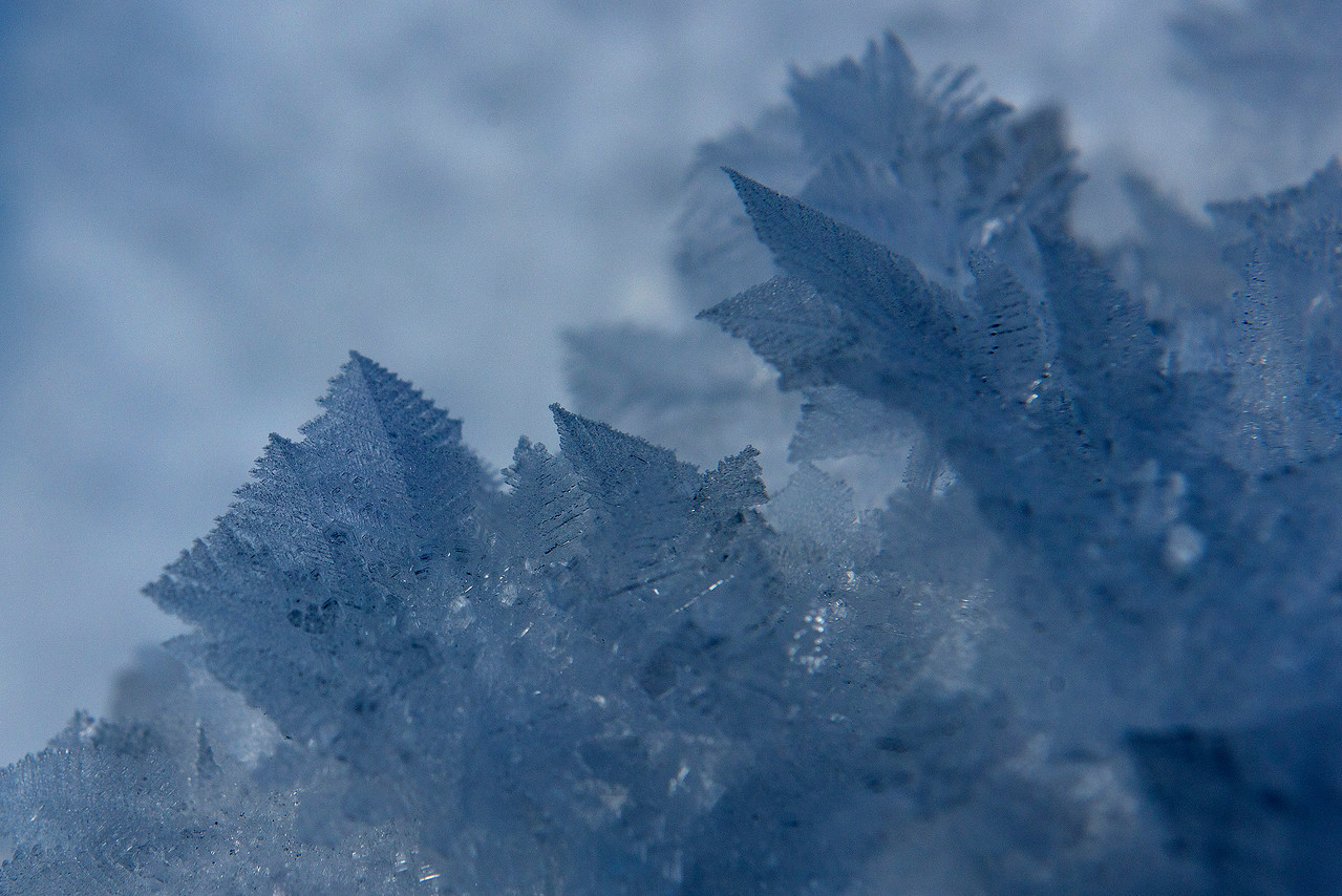 Feathery Ice Crystals