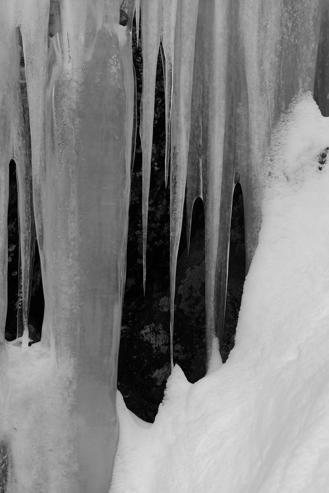 Purcell Mountain Icicles