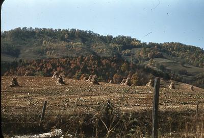 Autumn 1949