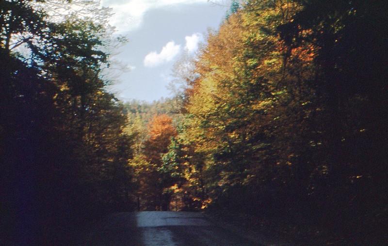 1951 October Autumn - On way to Calvin
