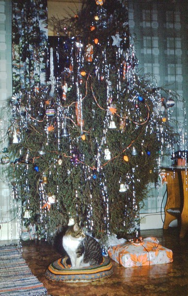 1952 Dec - Snoopy by our Christmas Tree