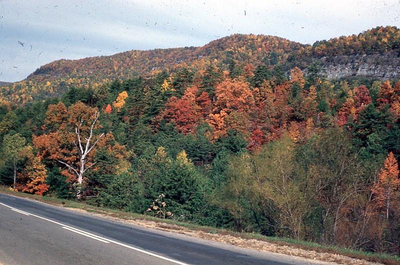 1954 - October Autumn