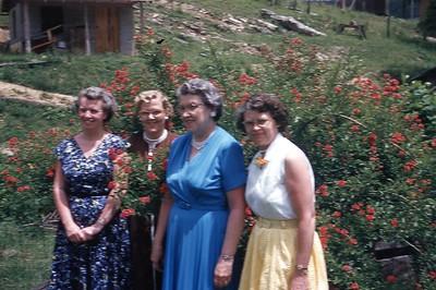 1955 Evie, Marion, Olive, Laverne