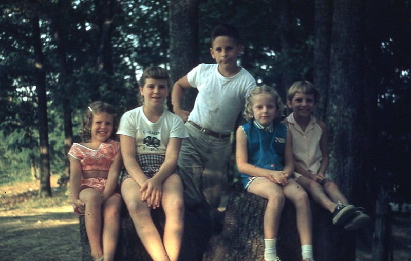 1958 Picnic