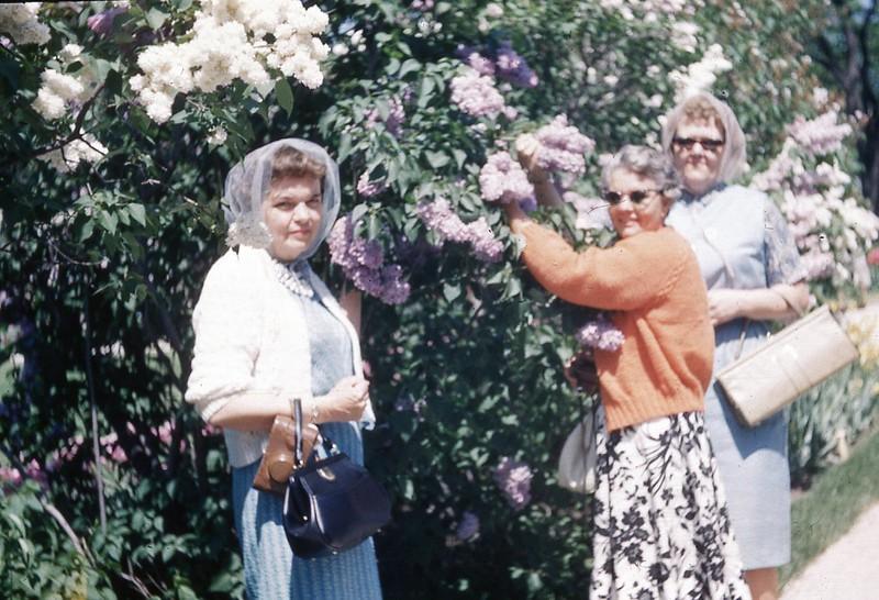 1964 - Lilac Festival - Lombard, Il