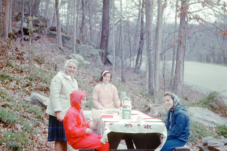 1966 - Picnic