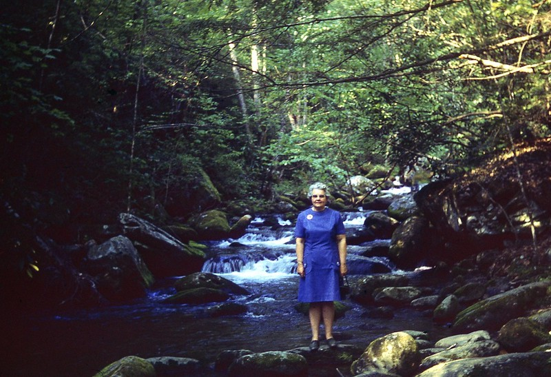1971 Winnie in th Smokies