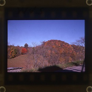 1974 Fall WVS 2