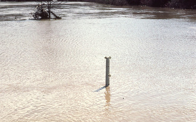 1977-''HEIGHT OF FLOOD WATER''
