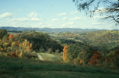 1982-''AUTUMN VIEW''