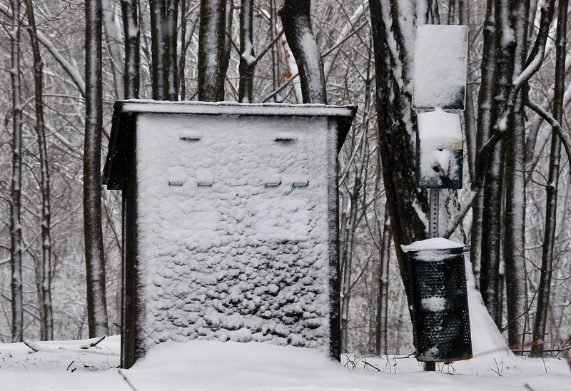 Winter Snow Storm Wind Blown