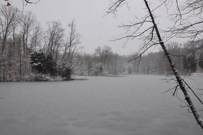 Powel Crosley Lake Winter Storm February 2010 Rowe Woods