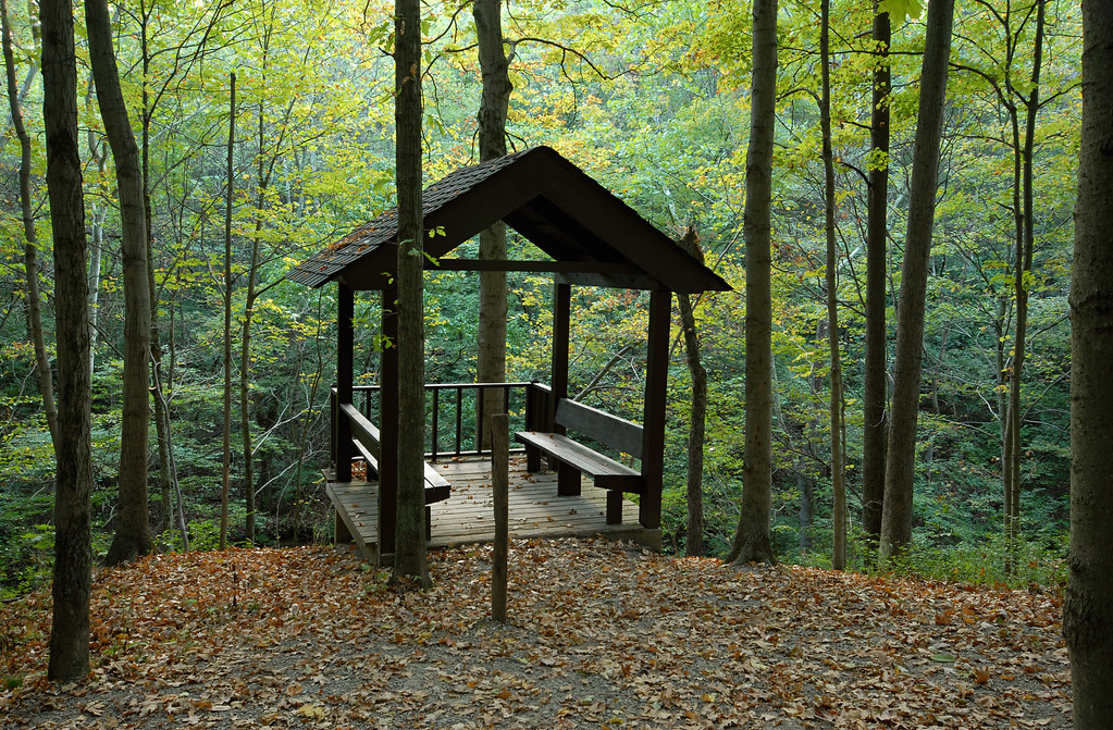 Avey Run Water Falls Over Look Shelter Rowe Woods