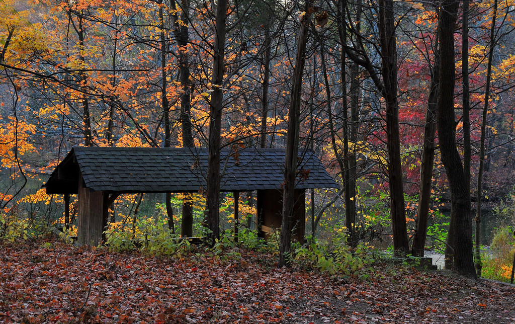 Autumn East PCL Shelter House