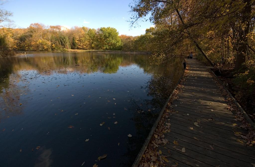 Walkway to Ellen's Bench - Powel Crosley Lake Cincinnati Nature Center at Rowe Woods