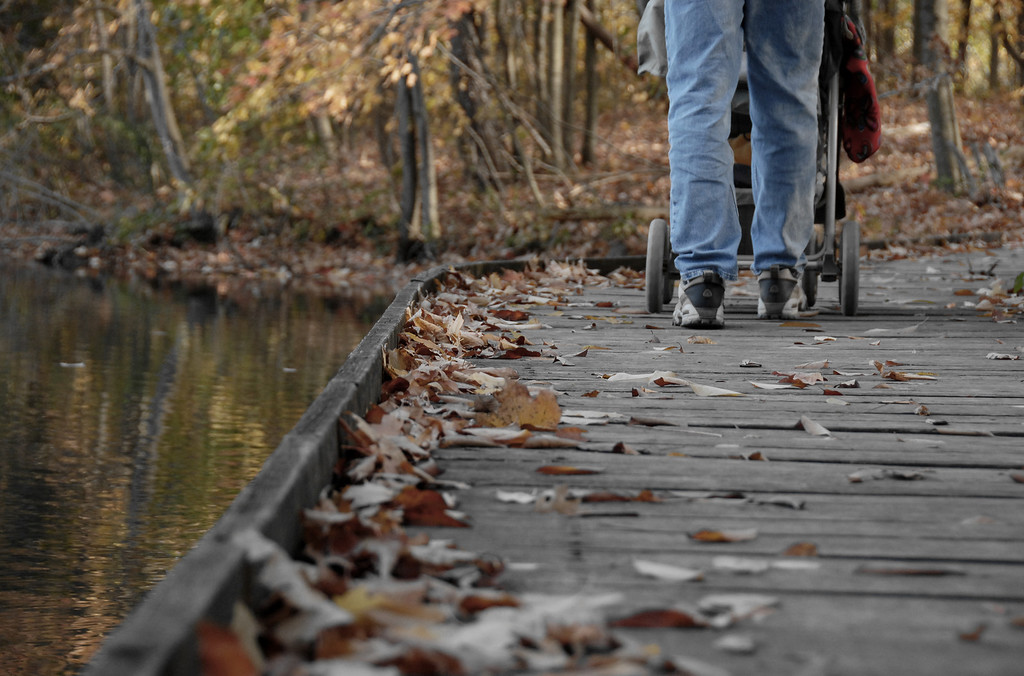 Autumn Family Stroll - The Wooden Walkway, Powel Crosley Lake Cincinnati Nature Center