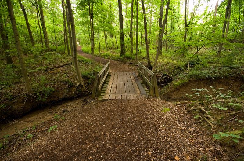 Cincinnati Nature Center at Rowe Woods woodland trails and bridges.