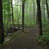 Woodland Trail Bridge Spring Time