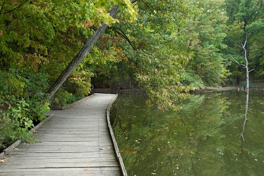 Wooden Walkway Cove Powel Crosley Lake Cincinnati Nature Center at Rowe Woods