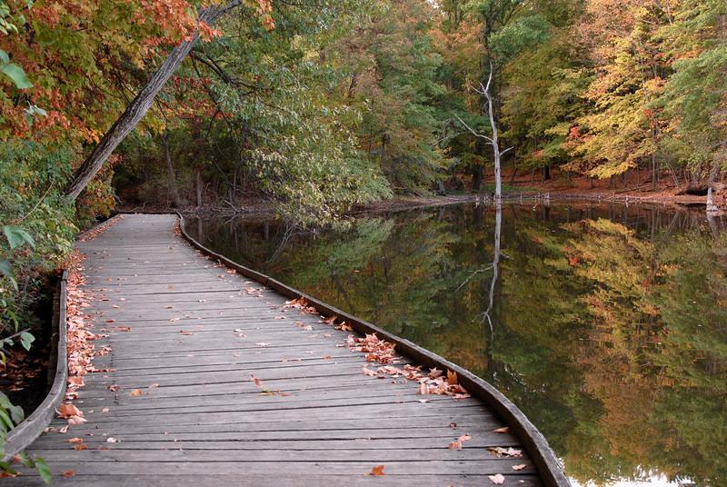 Wooden Walkway Powel Crosley Lake Autumn