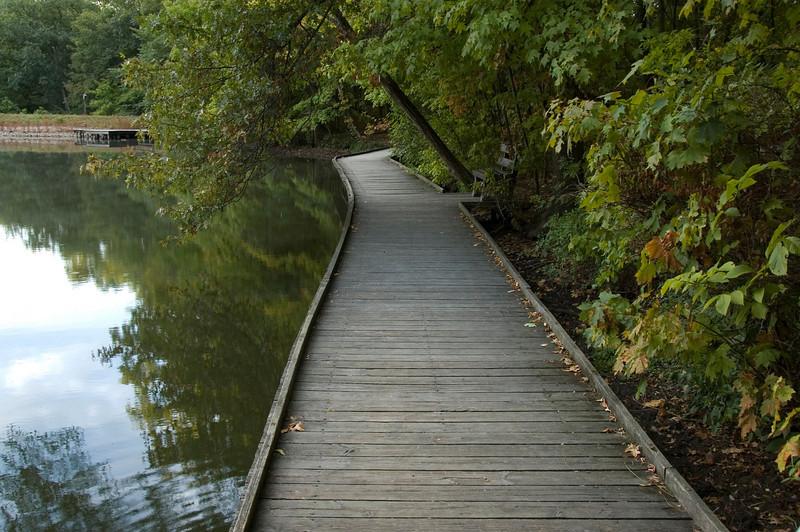 Wooden Walkway Ellen's Bench. Cincinnati Nature Center is Using this Picture on their website.