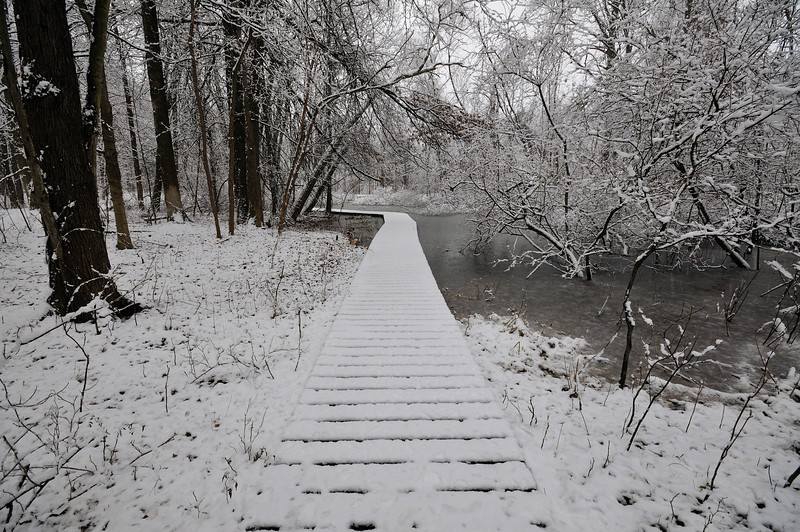 First Snow Virgin Snow Walkway