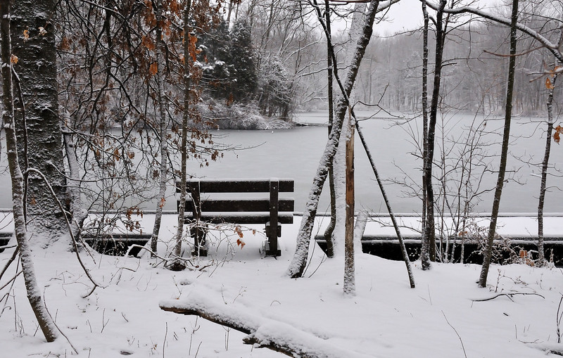 Ellen's Bench Winter 2010 View