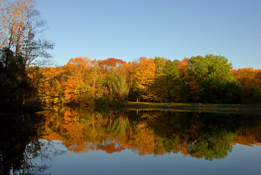 Reflecting on Powel Crosley Lake