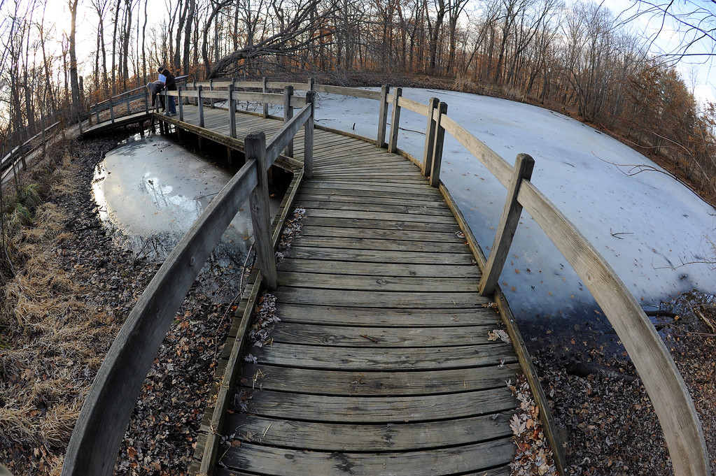 Lotus Pond Winter Wooden Walkway Fisheye