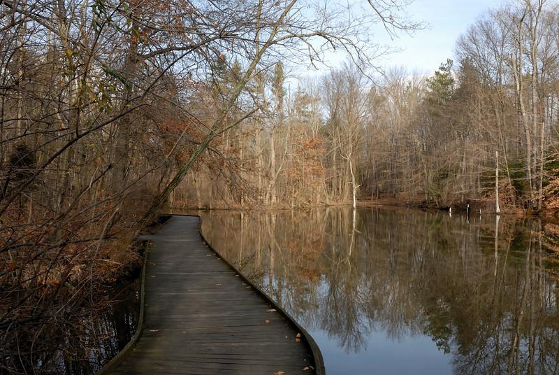 Winter Wooden Walkway