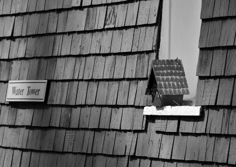 Water Tower Bird House B&W