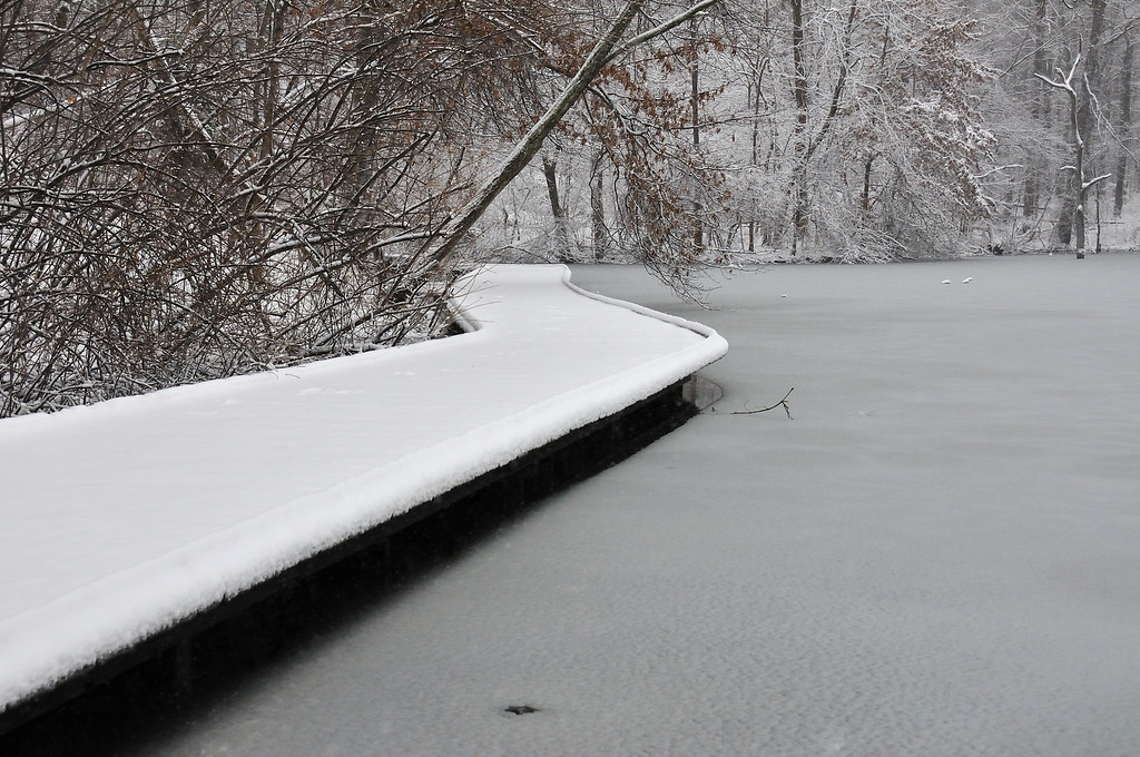 Winter Storm February 2010 Powel Crosley Lake Wooden Walkway