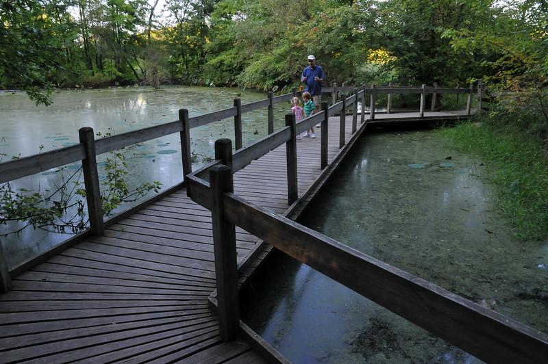 Family Walkway Lotus Pond