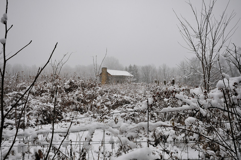 First Snow Abner Hollow Cabin, Snow Squall