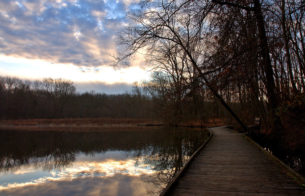 Ellen's Winter View On the wooden walkway Powel Crosley Lake
