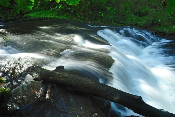 Carpenter Falls Ravine
