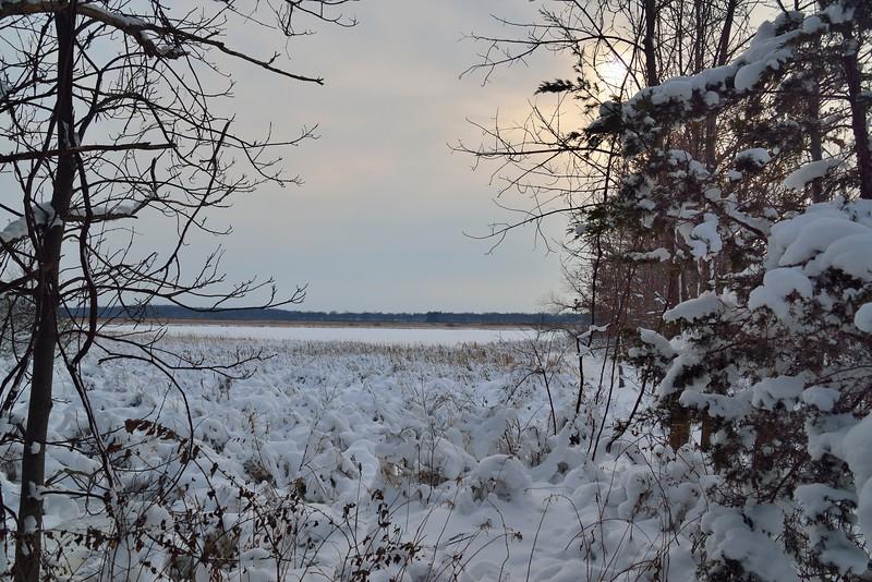 Deer Creek Marsh