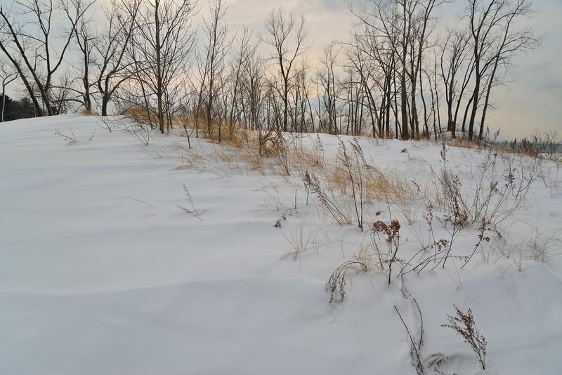 Dunes, Deer Creek Marsh