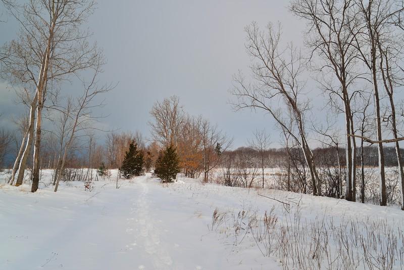 Trail, Deer Creek Marsh
