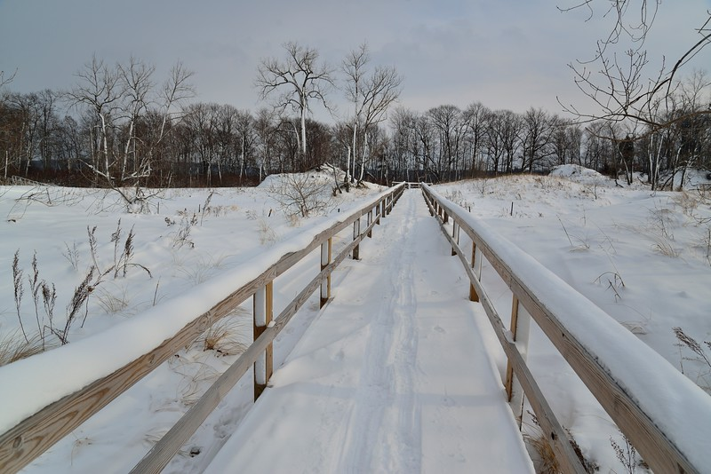 Boardwalk, Deer Creek Marsh