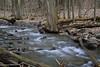 Tinker Falls Brook
