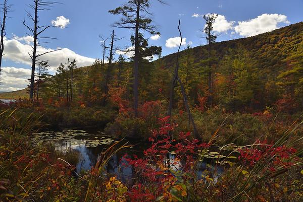Labrador Pond 29Sep13