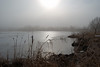 Morning Fog, Oneida Lake