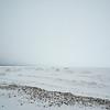Selkirk Shores